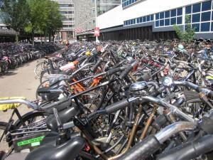 bikes n holland